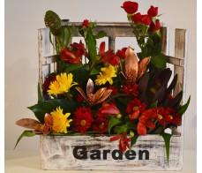 "Aranjament floral ""window'"